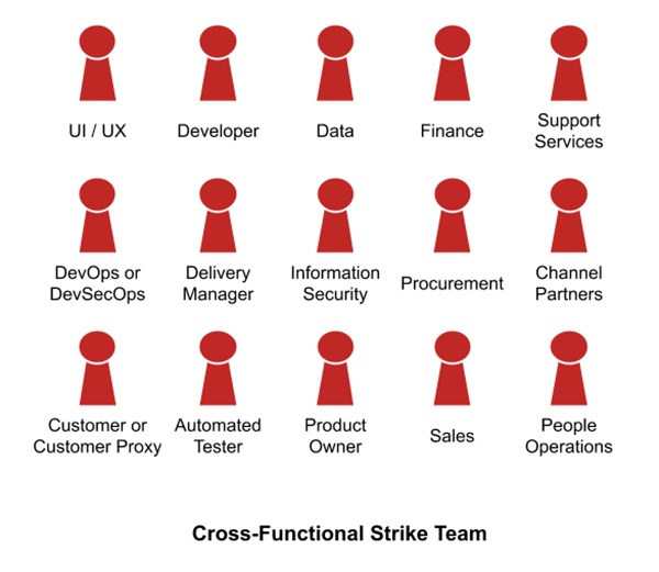 Cross-Functional Strike Team, (c) Trility, LLC